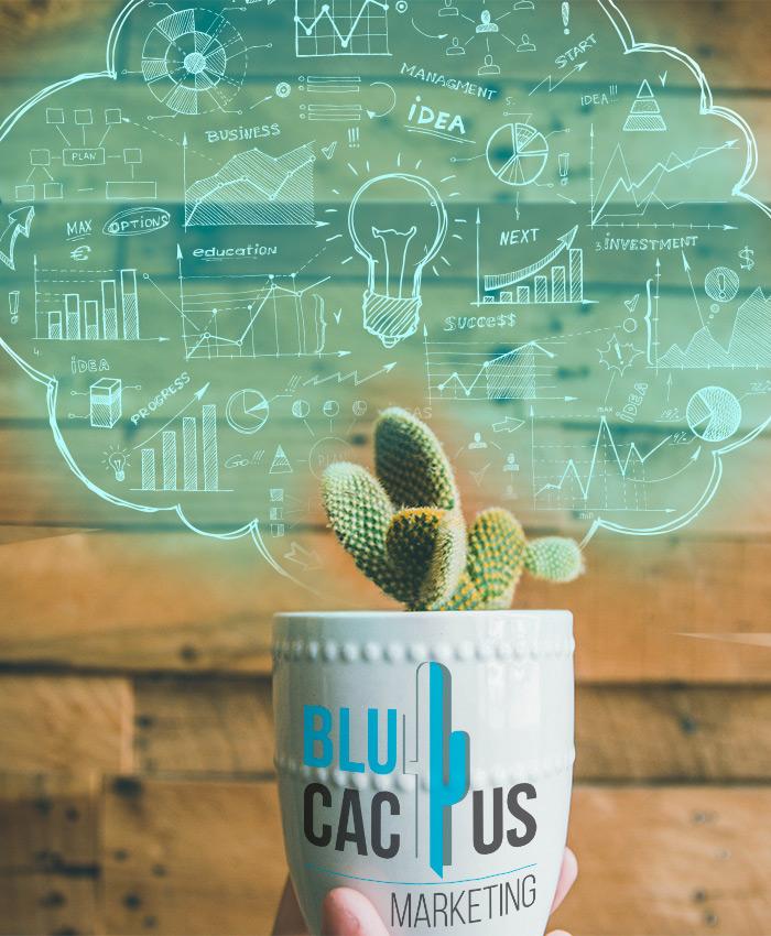 Blue Cactus - Agenzia di marketing digitale