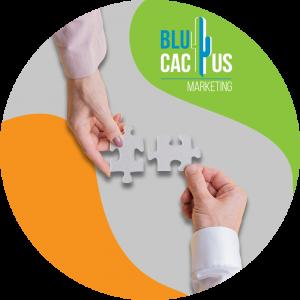 BluCactus-Scommetti-su-collaborazioni-e-traffico-di-riferimento.