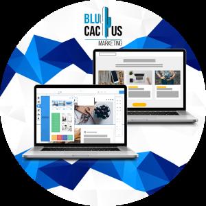 BluCactus-Quanto-costa-lo-sviluppo-di-software-1-I-due-tipi-di-software-gestionale