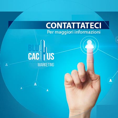 Blucactus Servizi Identità Aziendale Contattaci per maggiori informazioni