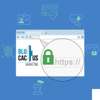 BluCactus - protocollo http