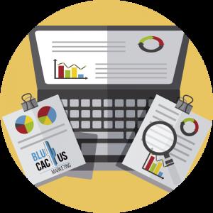BluCactus - grafiche e i diagrammi funzionano